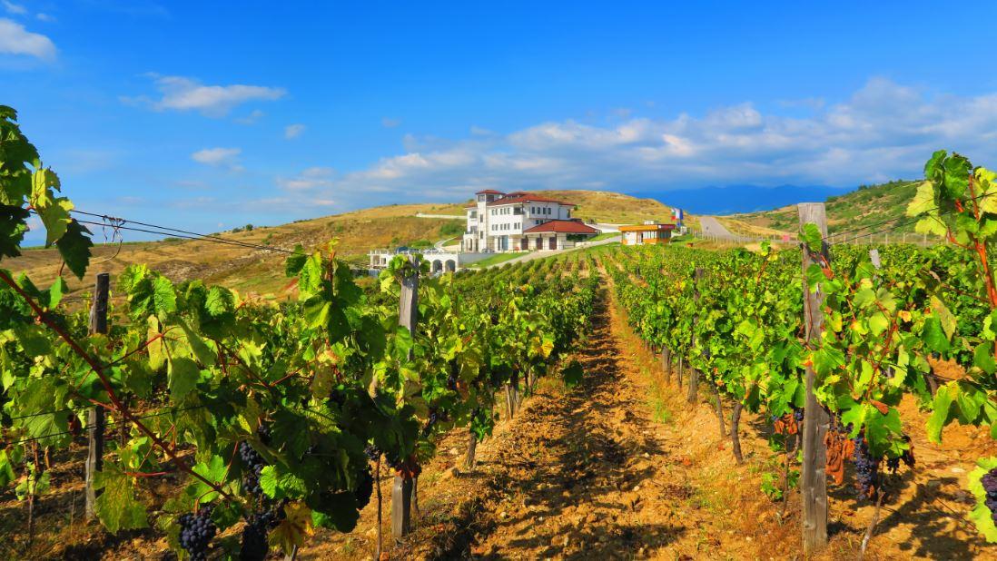 Villa-Melnik-Winery